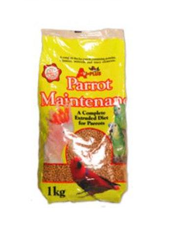 Avi Parrot Maintenance