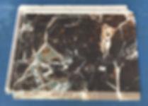IMG_1947_edited.jpg