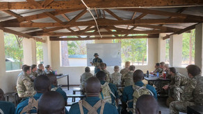 Countering the Illegal Wildlife Trade - Reflections on military cooperation in Malawi