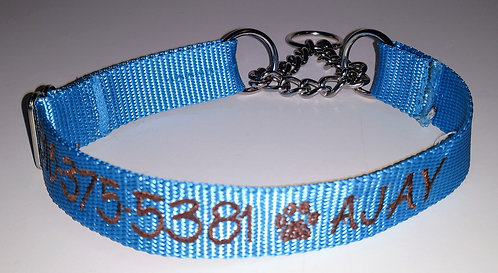 Dog Martingale Collars with chain
