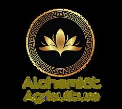 Alchemist%20_edited.png