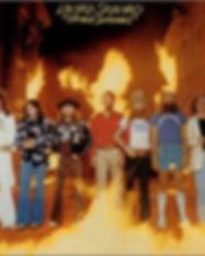StreetSurvivorsFlames.jpg