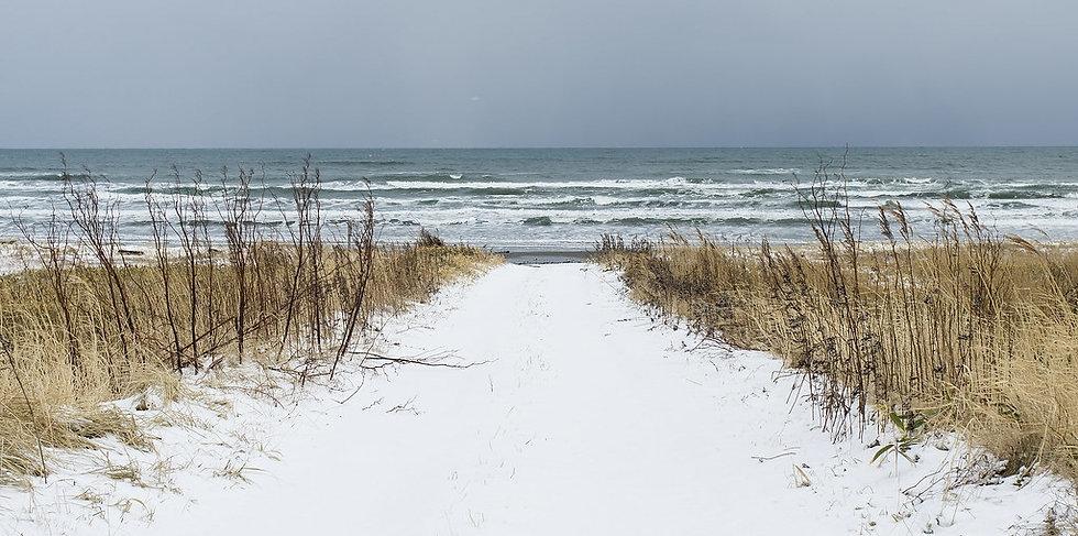 snow and salt.jpg