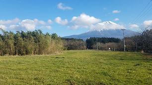 Fuji View Farm