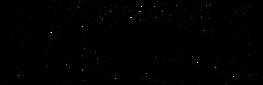 logos story dance fond noir transparent.