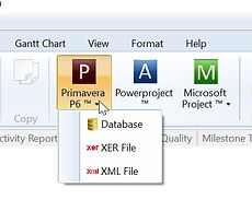 Primavera P6 S Curves and Microsoft Project S Curves