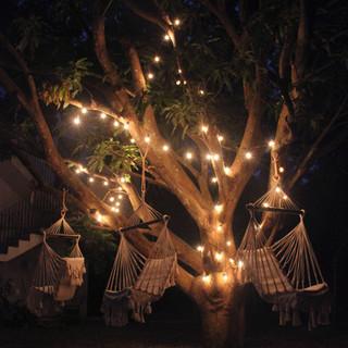 Hammocks in tree