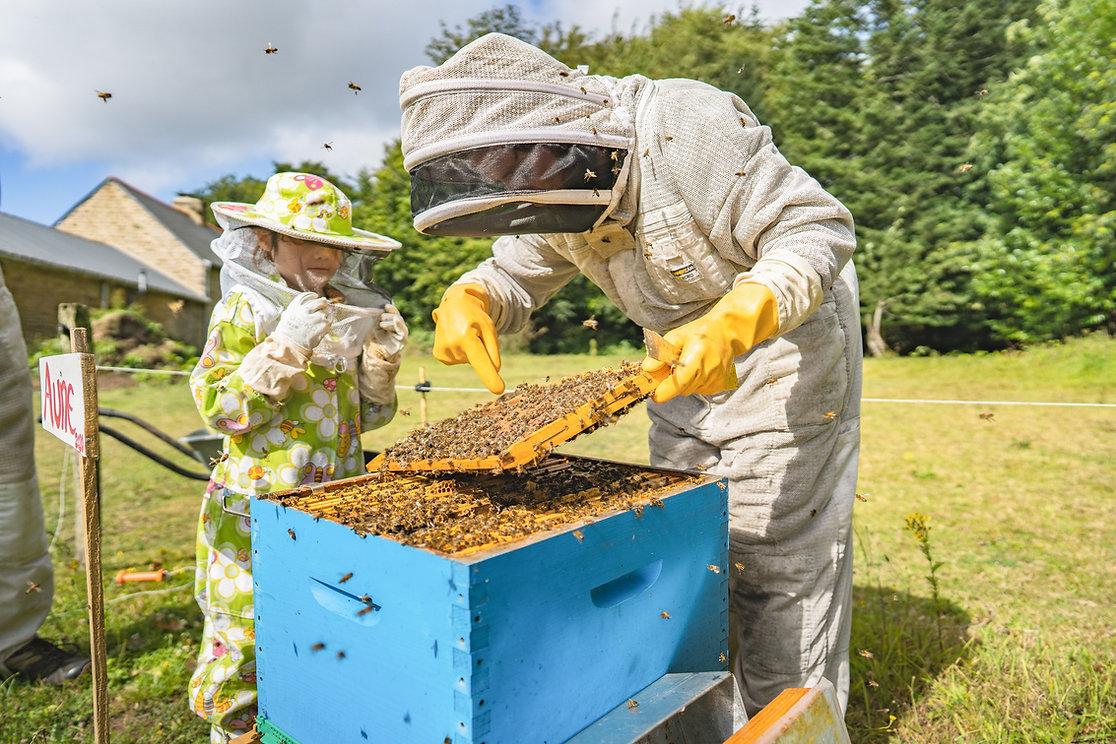Fontaine Airmeth experience bretonne abeilles
