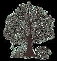 Fontaine Airmeth logo