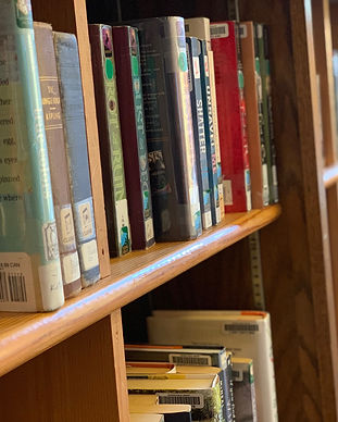 YA Shelves.jpg