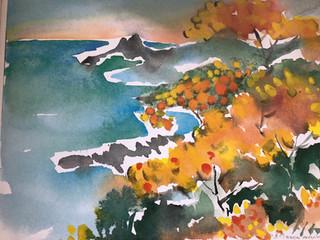 Watercolor mimosa