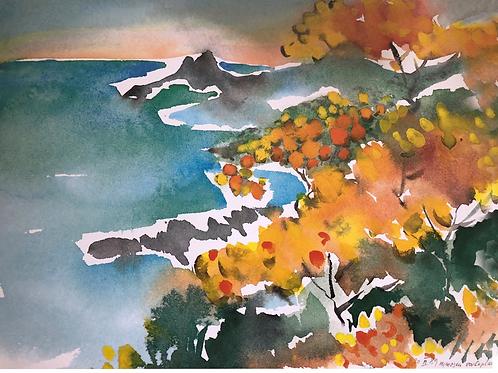 Postkarte Mimosa