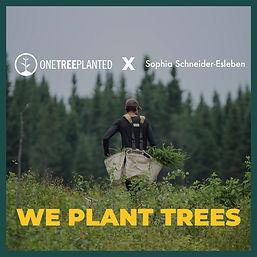 Plant tree x Schneider-Esleben .jpg