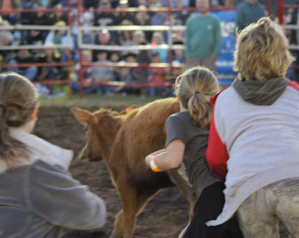 2018 Calf Scramble