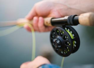 Teach them how to fish
