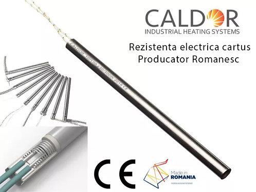 Rezistente electrica cartus 12x100 250w