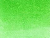 047_MAY GREEN.jpg