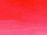023_SCARLET RED.jpg