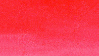 023_SCARLET RED