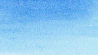 037_CORNFLOWER BLUE