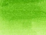 041_LIGHT GREEN.jpg