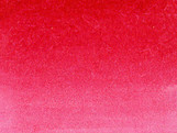 029_GERNIUM RED.jpg