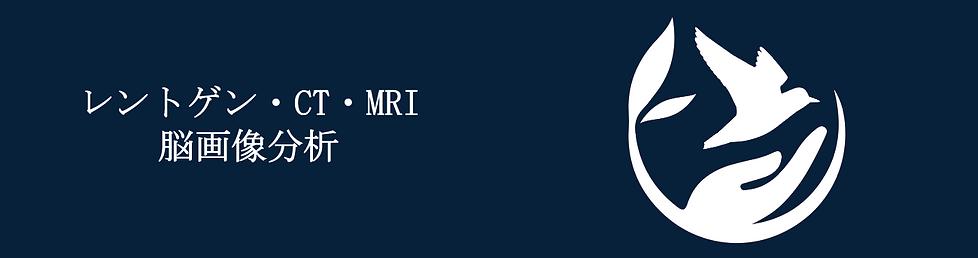 レントゲン・CT・MRI・脳画像分析.png