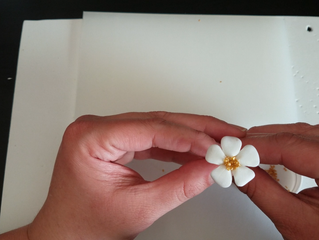 How To Make Simple Filler Sugar Flowers