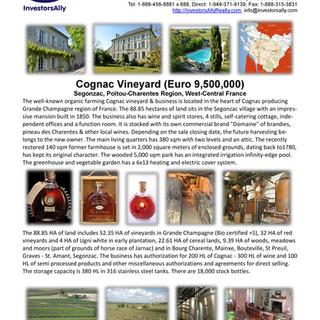 InvestorsAlly Realty_Cognac Vineyard in