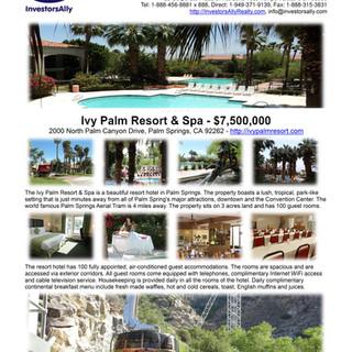 InvestorsAlly Realty Flyer_Ivy Palm Reso