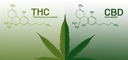 Image%20cannabis%20of%20the%20formula%20