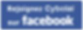 Rejoindre Cybolaï sur Facebook