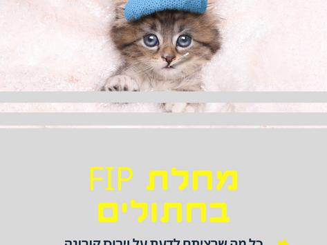 וירוס קורנה ומחלת ה - FIP בחתולים