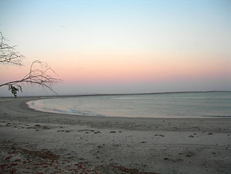 DSCN6135-estuary-recolor.jpg