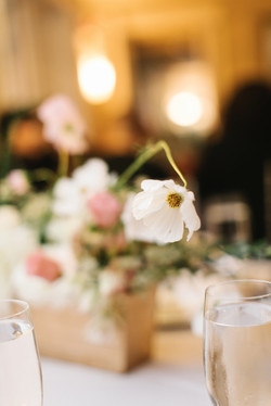 Amber Nolan Wedding-7 RECEPTION-0025