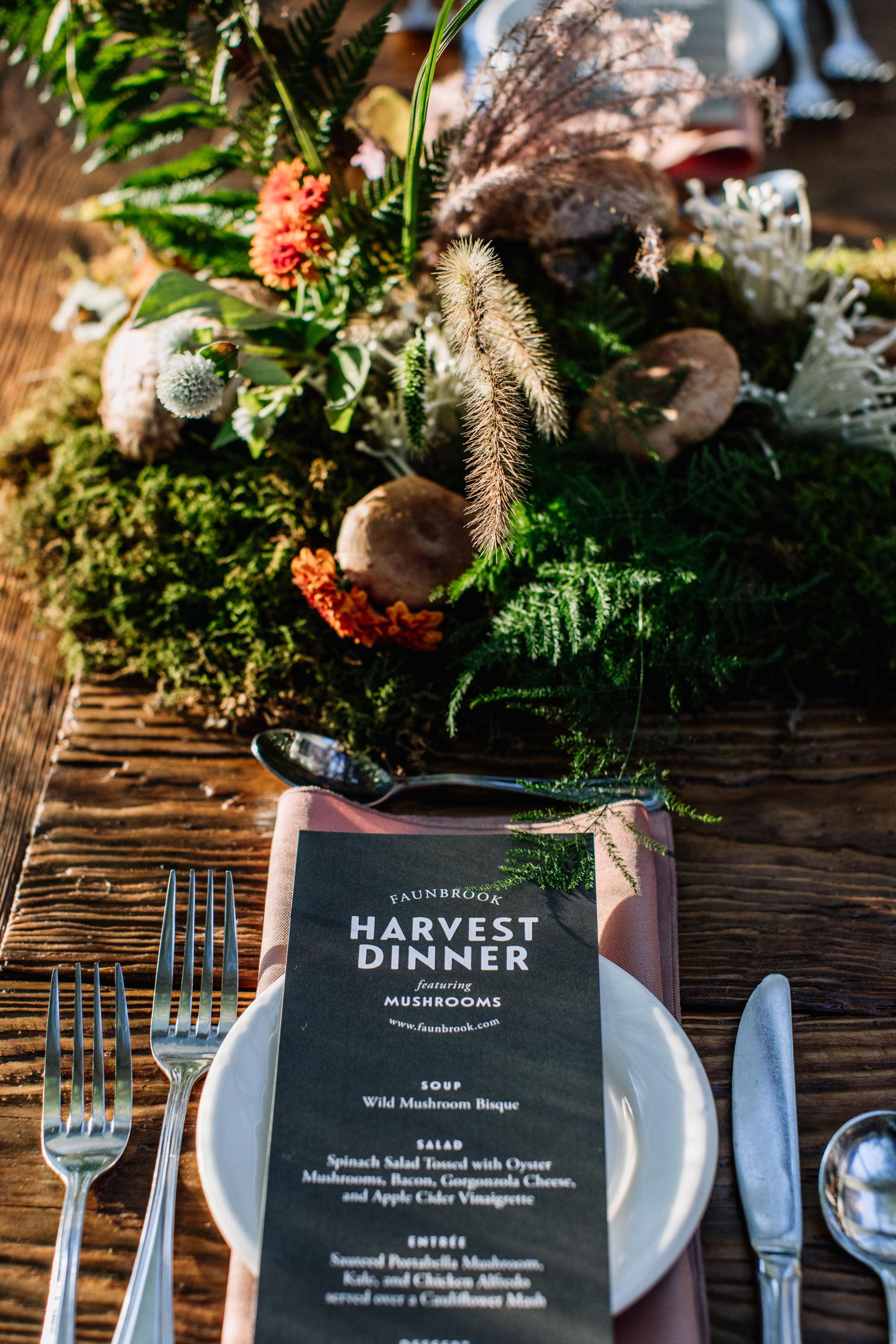 Faunbrook-Harvest-Mushroom-0049