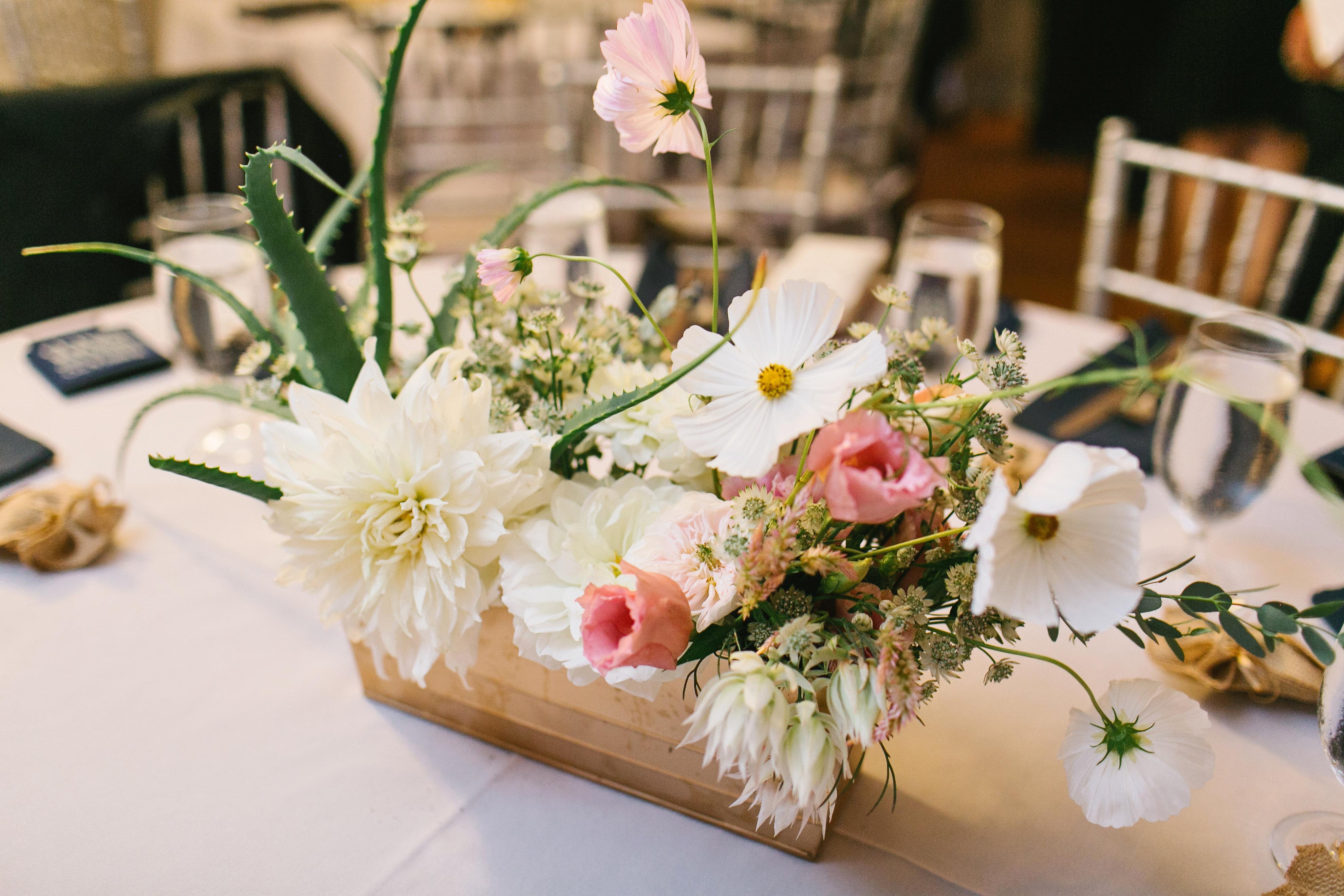 Amber Nolan Wedding-7 RECEPTION-0023