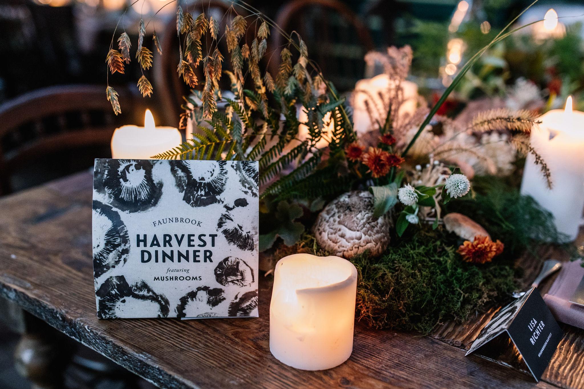 Faunbrook-Harvest-Mushroom-0125