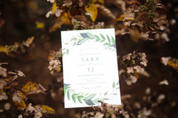 Tara and TJ Wedding-38
