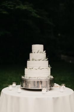 vera-tony-wedding-492