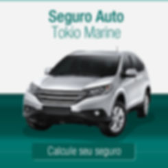 Cotador de Seguro Auto Tokio marine, a maeira mais rápida e fácil de protege seu carro.