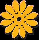 Logo%20novo%20elastempA_edited.png