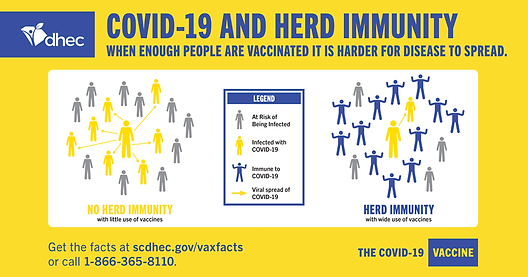 COVID-19-herd-immunity-graphic.png