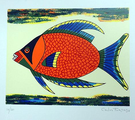Peixe V