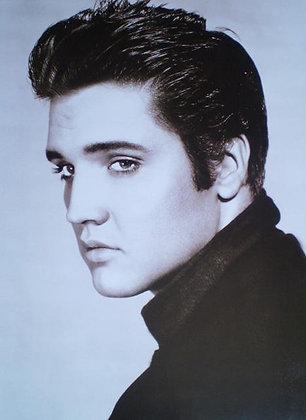 Elvis 331