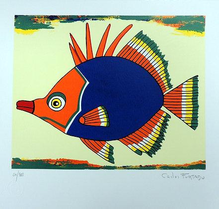 Peixe VIII