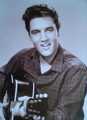 Elvis 330