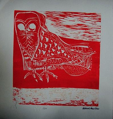 Coruja Vermelha
