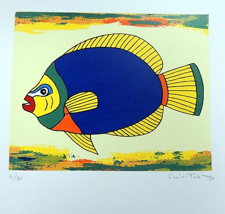 Peixe VI