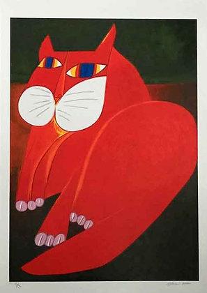 Gato Grande Vermelho